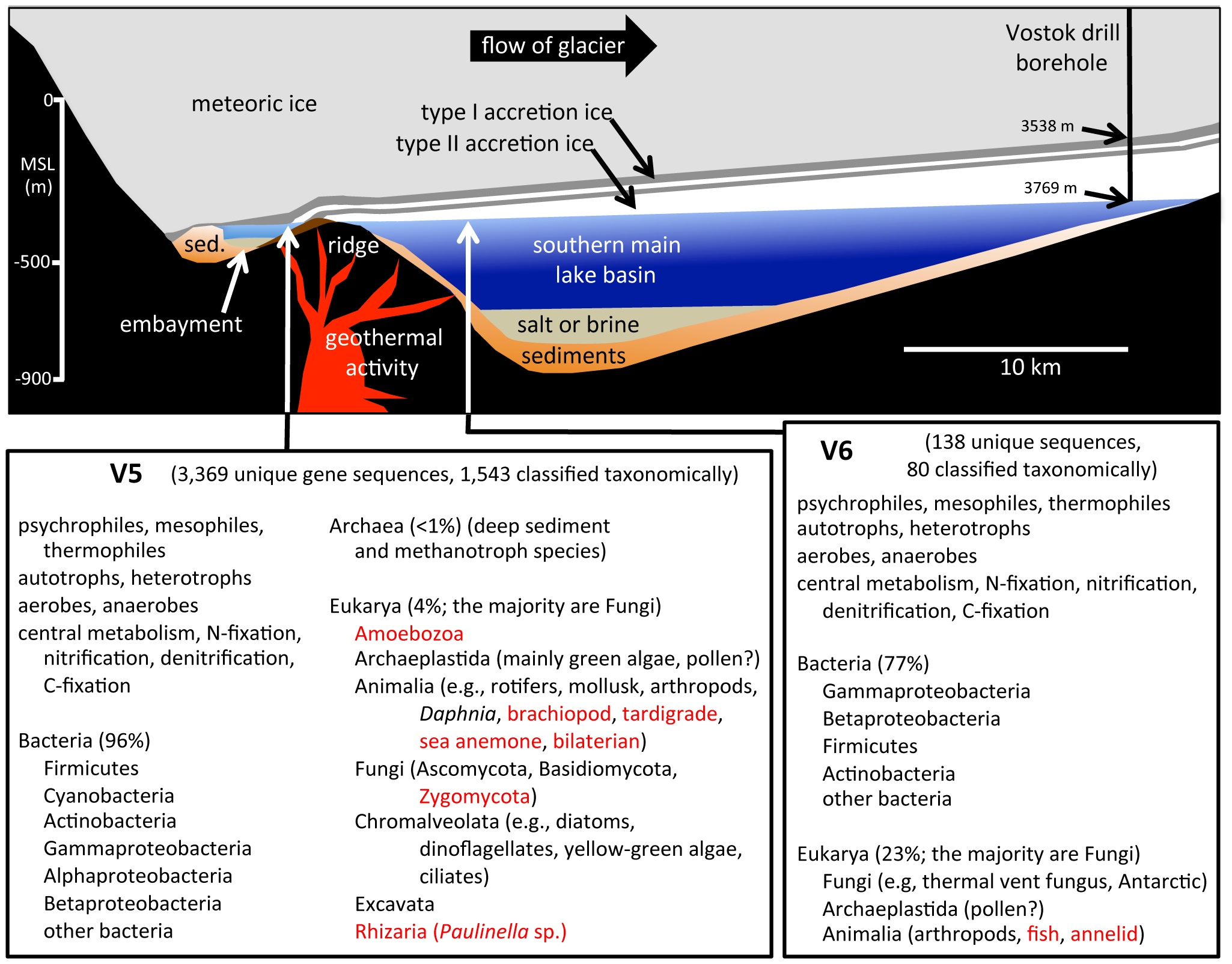 Schematic cross-section of Lake Vostok. From PLoS One