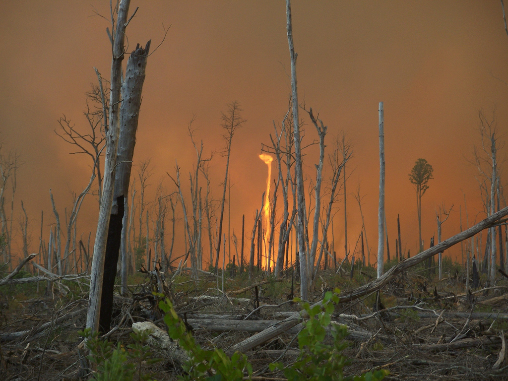 Greg Sanders, a firefighter with the U.S. Forest Service, captured this shot of a fire whirl while doing reconnaissance work on the Lateral West Wildlfire, which blazed through Virginia's Great Dismal Swamp National Wildlife Refuge in August 2011. Photo by Greg Sanders/Photo source: USFWS