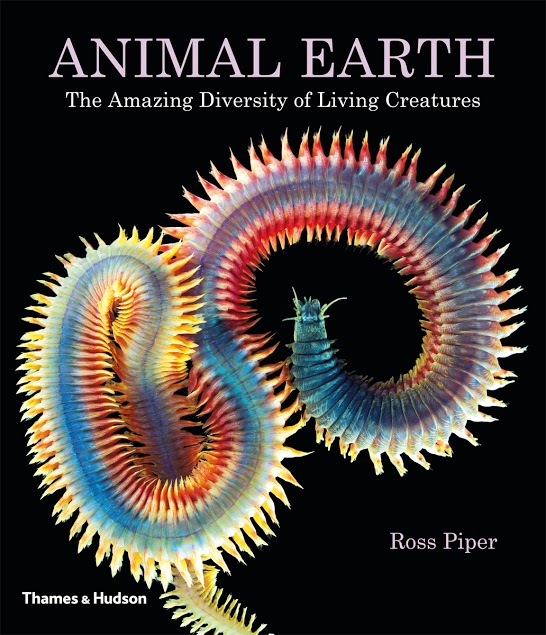 Animal Earth 9780500516966