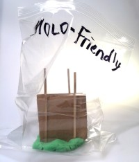Mold Friendly House Model