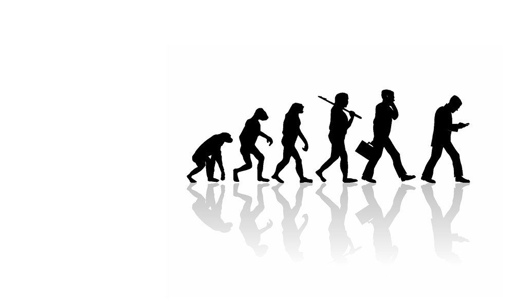Image courtesy Shutterstock, evolution