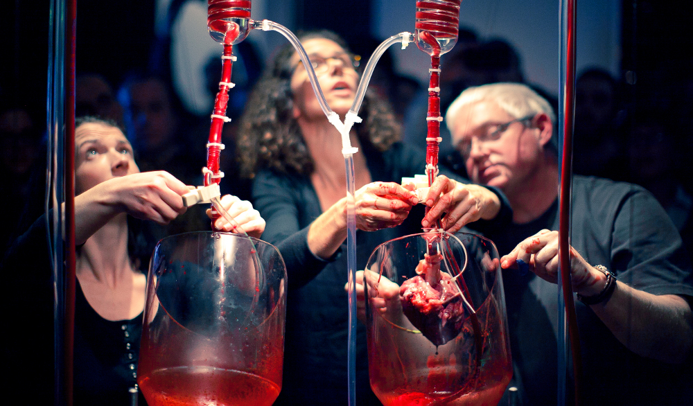 """Oscillator,"" an exhibition at Dublin's Science Gallery, launched in 2012 with a performance involving the reanimation of two freshly disembodied pig hearts obtained from animals used for meat. Credit: sciencegallery.com"