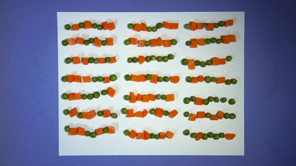 """Science Friday Rules!"" written in binary using peas (0) and carrots (1)"