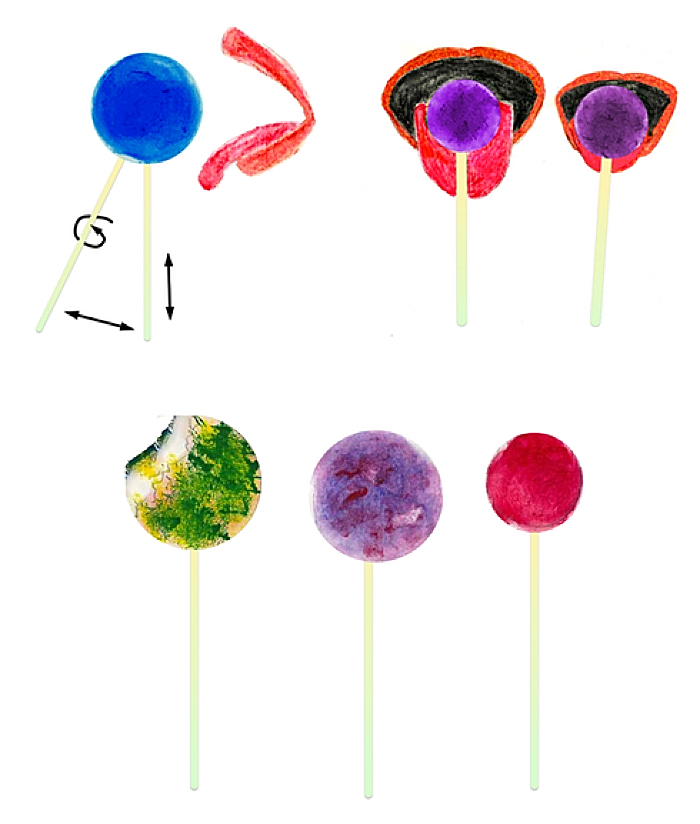 How could lollipop lickers and their lollipops differ from one another?
