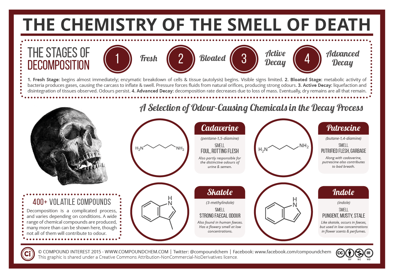 A more detailed look at the chemical compounds in decomposition, by Compound Interest