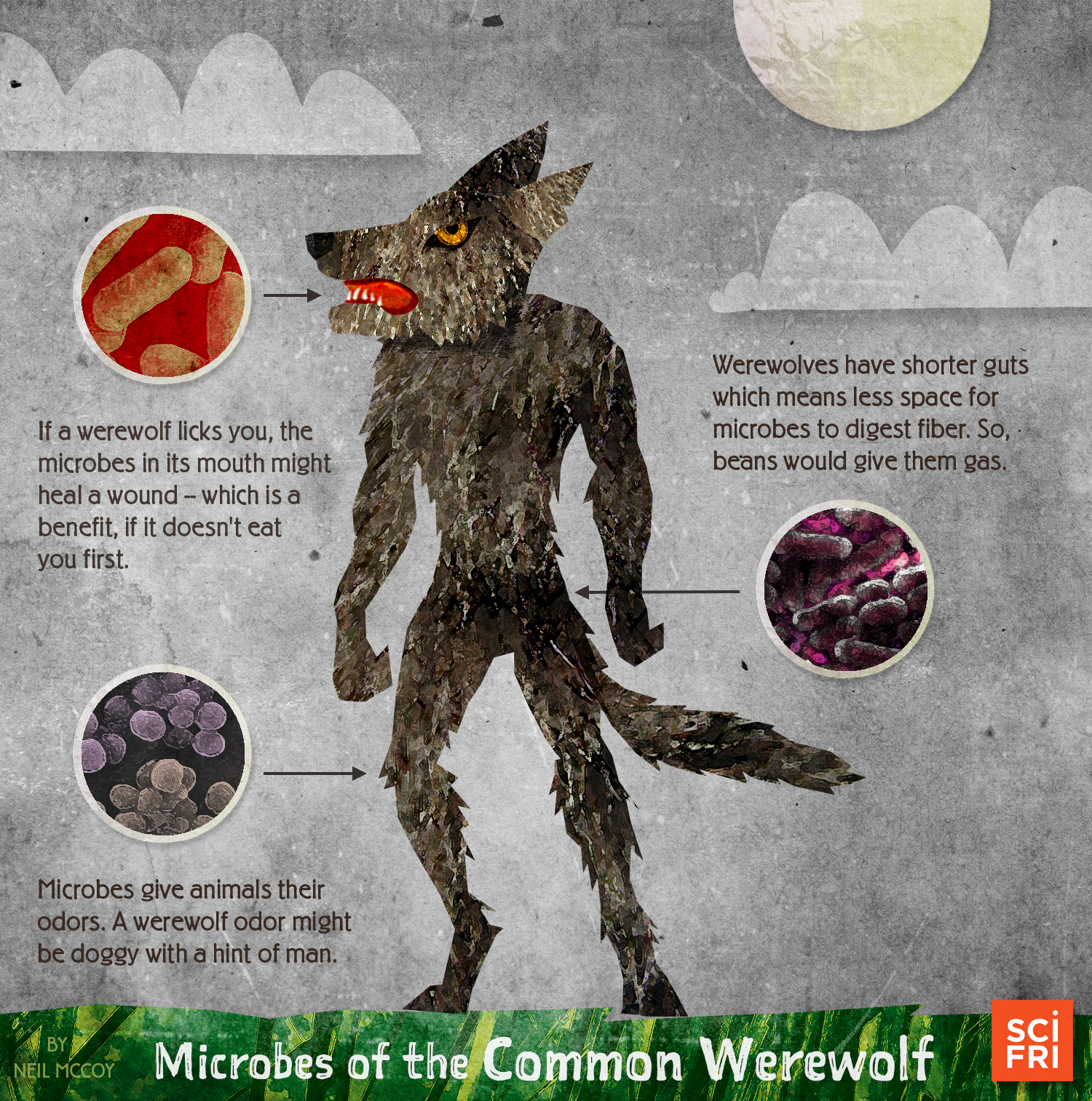 """Microbes of the Common Werewolf,"" by Neil McCoy, Science Communication and Design, Applied Ecology at North Carolina State University"