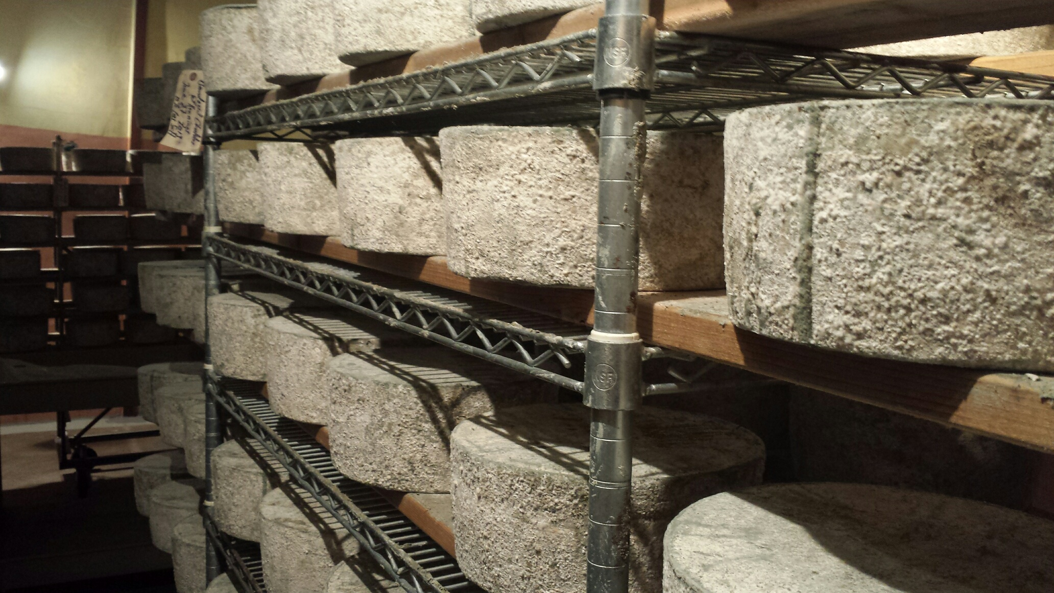 Wheels of cheese being aged in Lehner's cheese cave. Photo by Willi Lehner