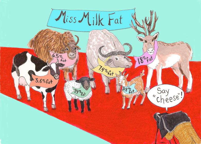 Miss Milk Fat