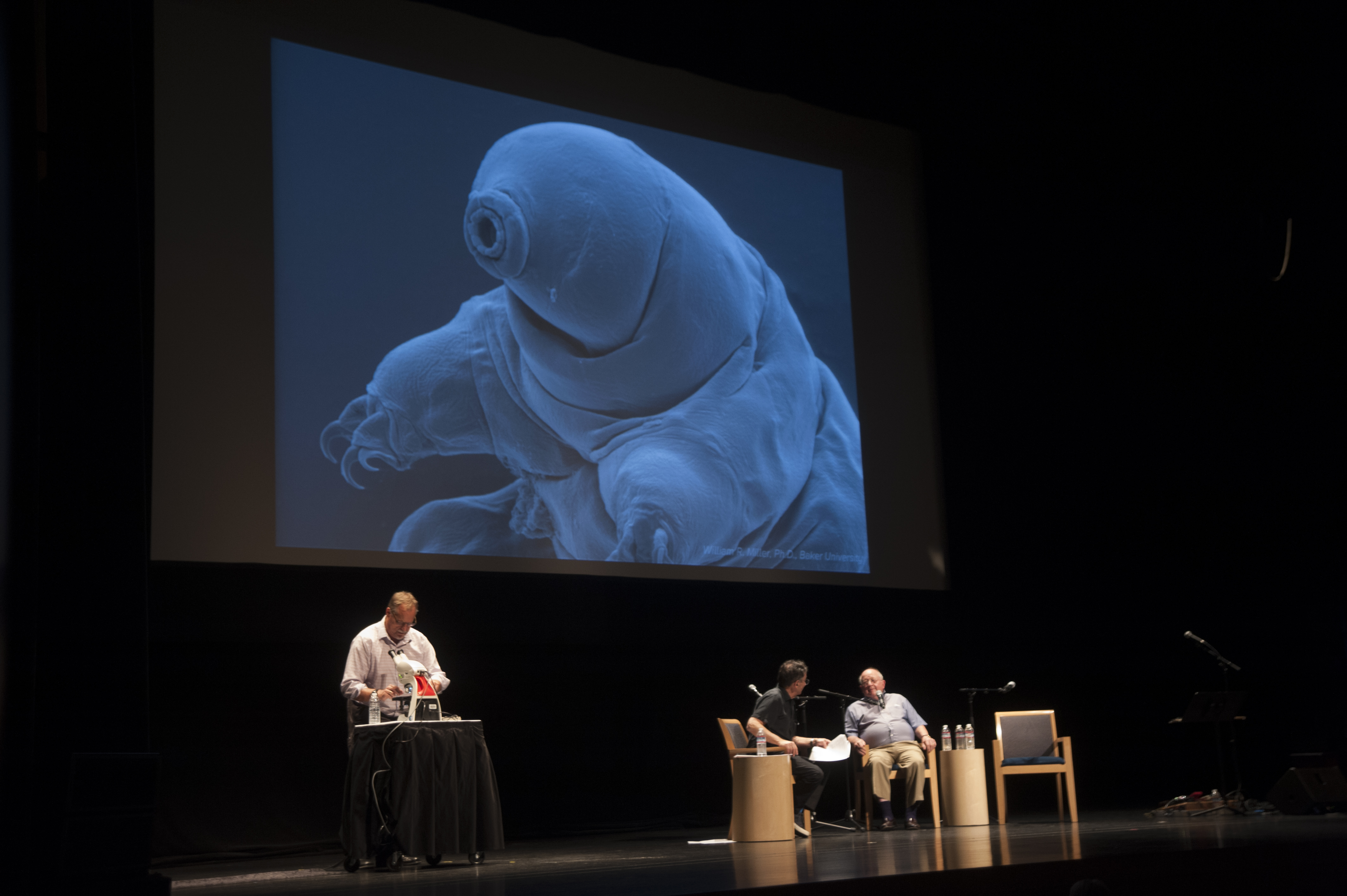 From lef to right: Carl Johansson, Ira Flatow, and John Crowe discussing the tardigrade. Credit: Adeline Xu/UC Davis