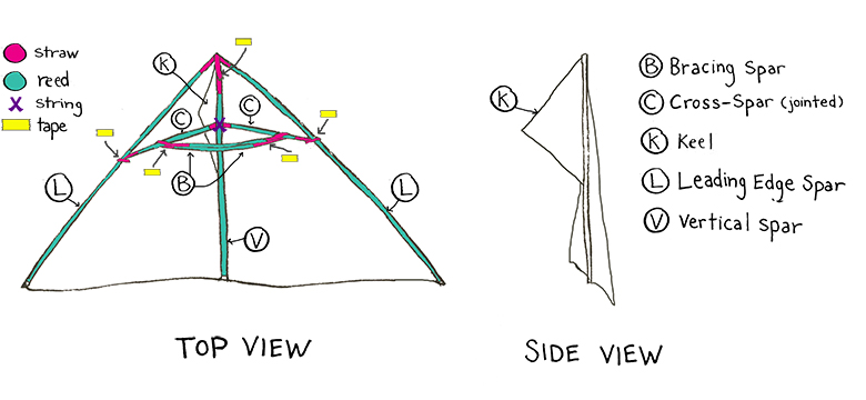Make A Kite With Physics Science Friday