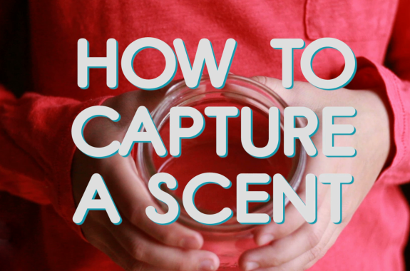 Aha! How To Capture a Scent