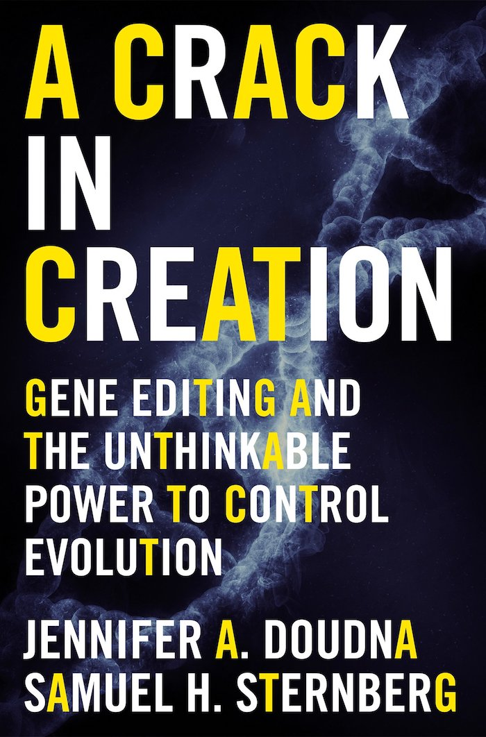 crack in creation book cover