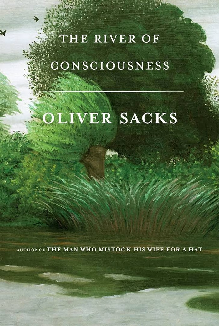 river of consciousness book cover