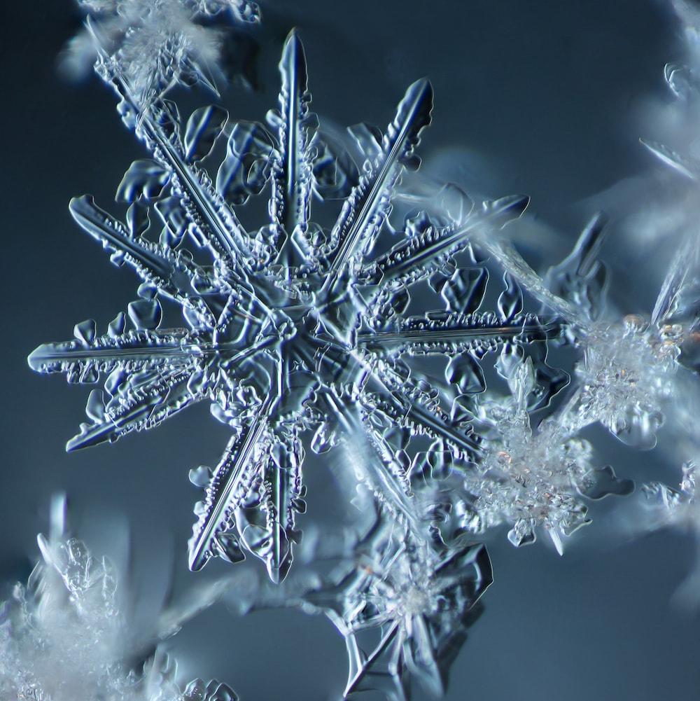 a cluster of snowflakes