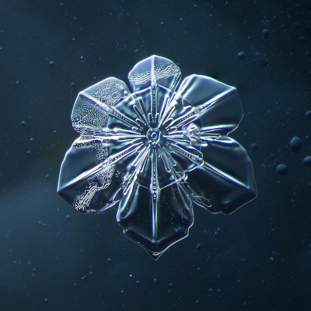 single bubbly looking snowflake