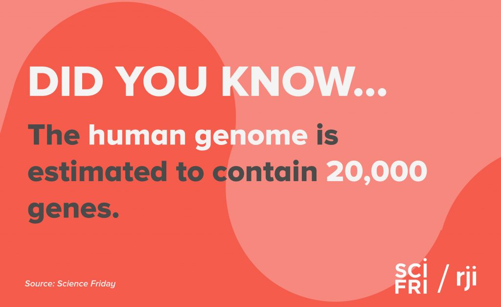 "Card that says ""did you know the human genome is estimated to contain 20,000 genes."""