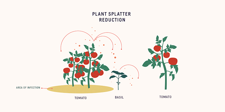 graphic of plant splatter reduction