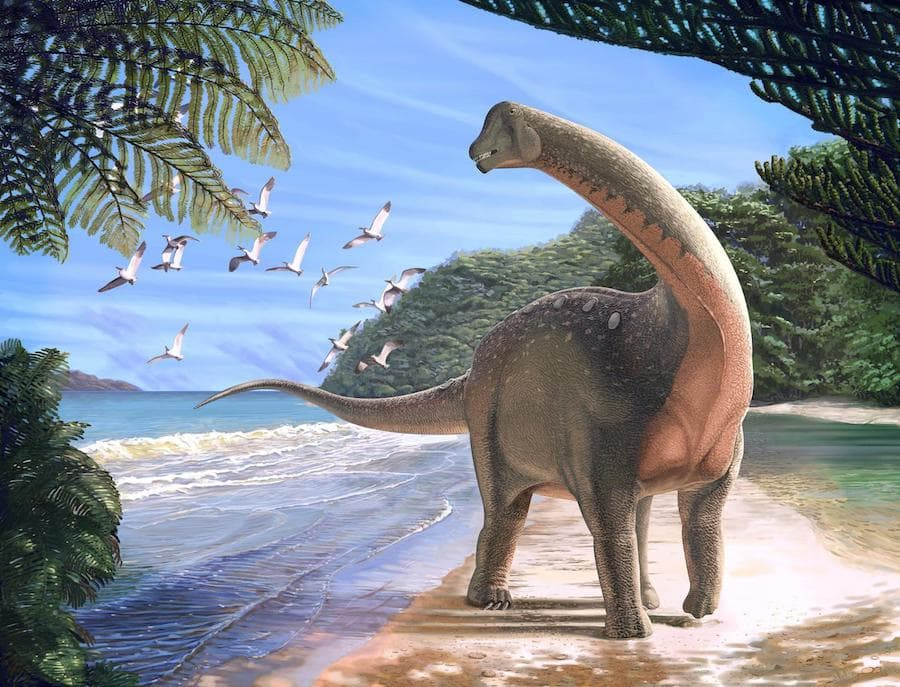 illustration of long-necked dinosaur walking on tropical beach