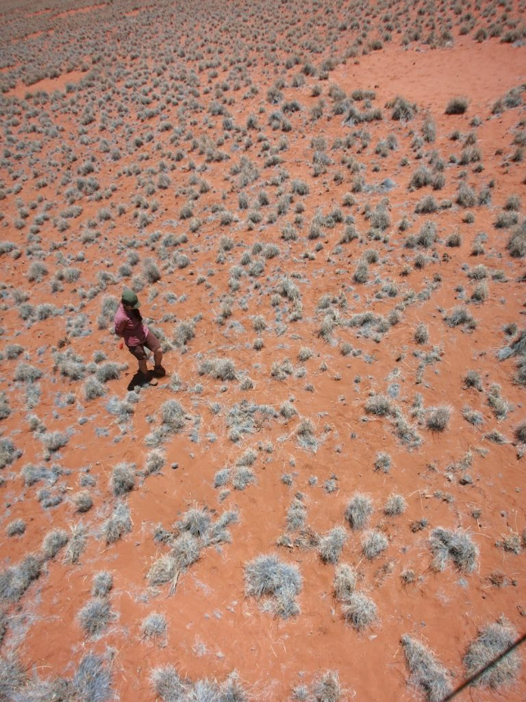 aerial shot of graduate student walking out in the namib desert