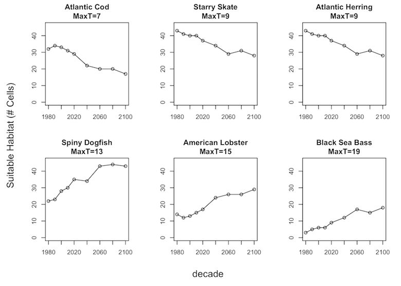 graphs of suitable habitat temperatures for the six different species over time