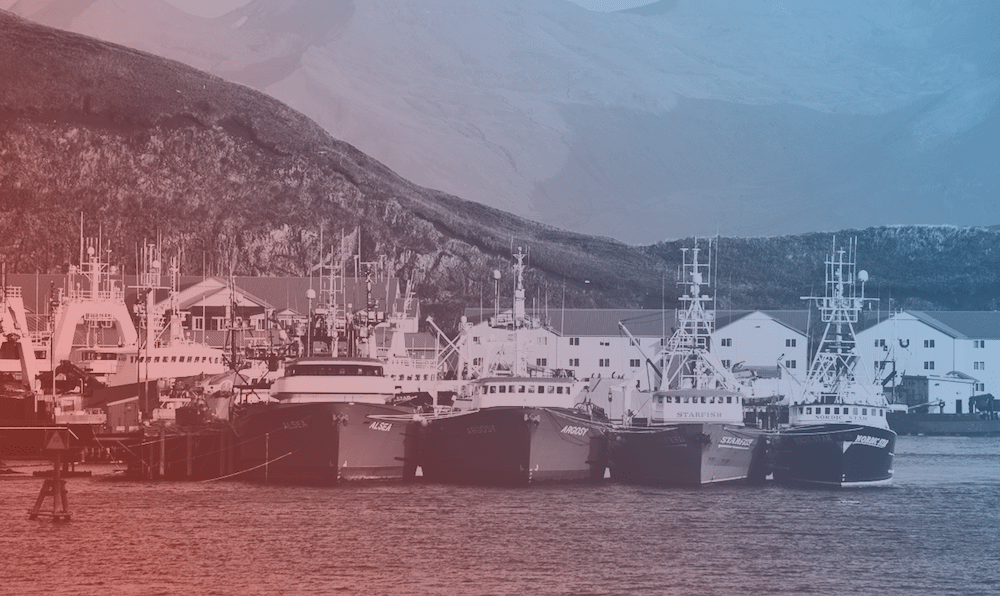 a line of fishing trawlers docked in the harbor with a red and blue gradient