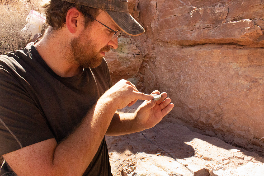 a man holding a rock in the desert pointing at little pieces of bone in it