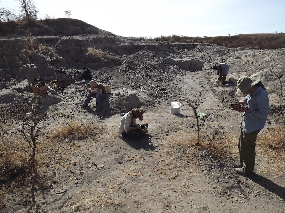 researchers out in an excavation site
