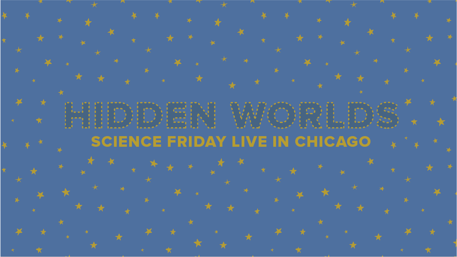 Hidden Worlds: Science Friday Live In Chicago logo among stars