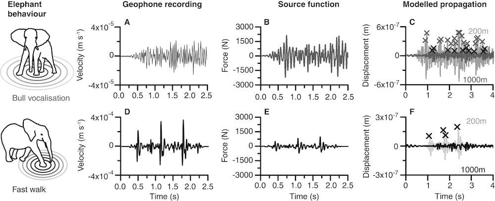 six different line graphs of elephant vibrations