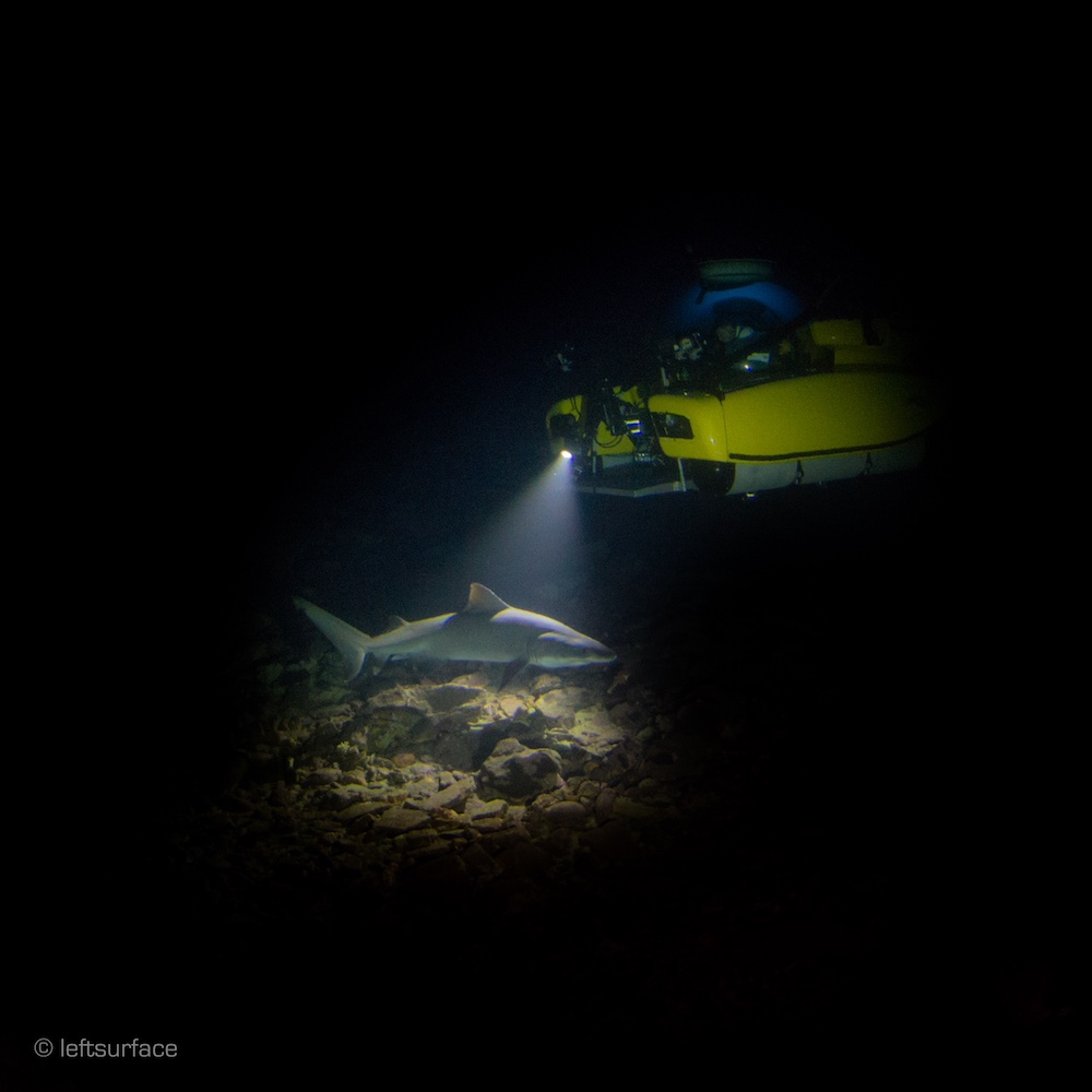 a small submarine in pitch black ocean illuminating a shark with one light