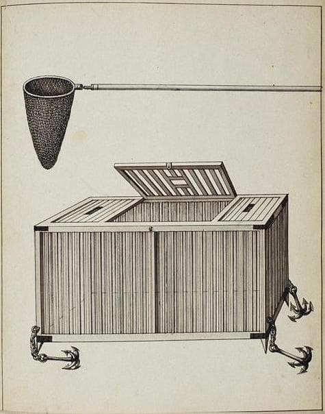 an illustration in black and white of a wooden box cage. a looped net with a staff is depicted above it