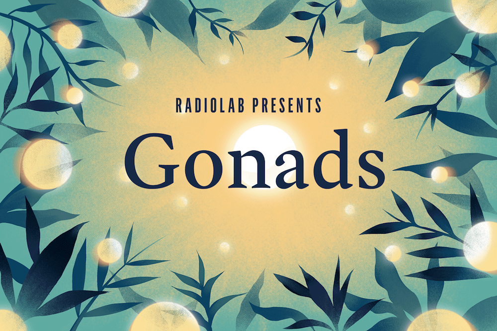 "illustration that says ""radiolab presents: gonads"" surrounded by plants with large glowing circles on some of them"