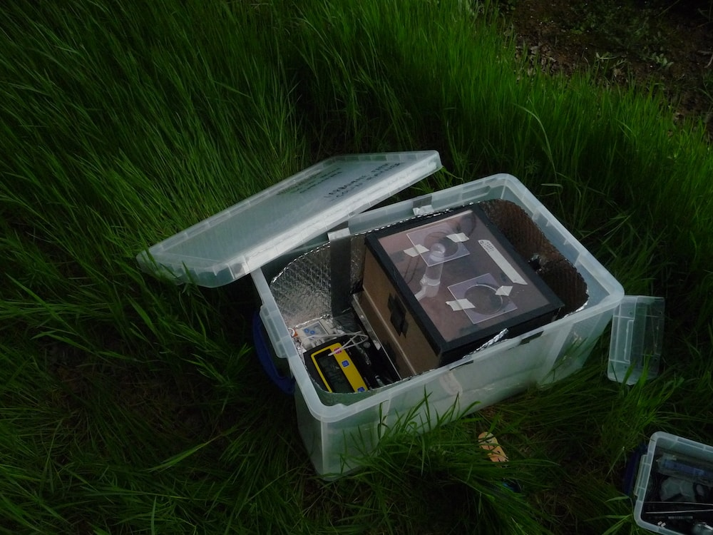 a large clear plastic box with a smaller cardboard box inside sits uncovered in tall grass
