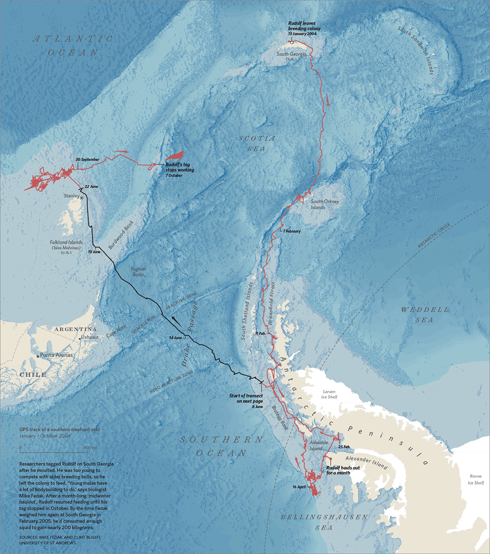 map of seals moving into small areas