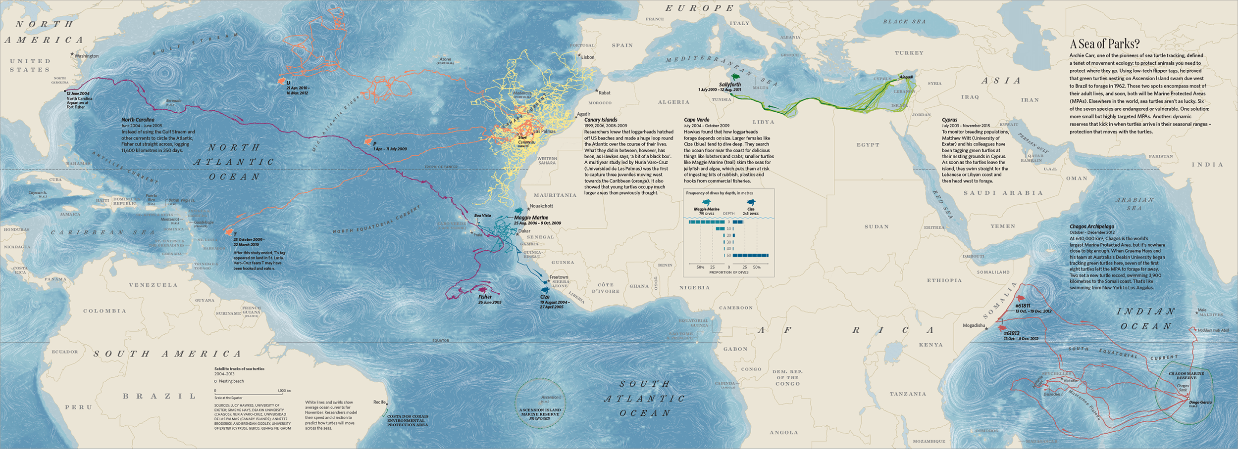 map of turltes moving across the ocean