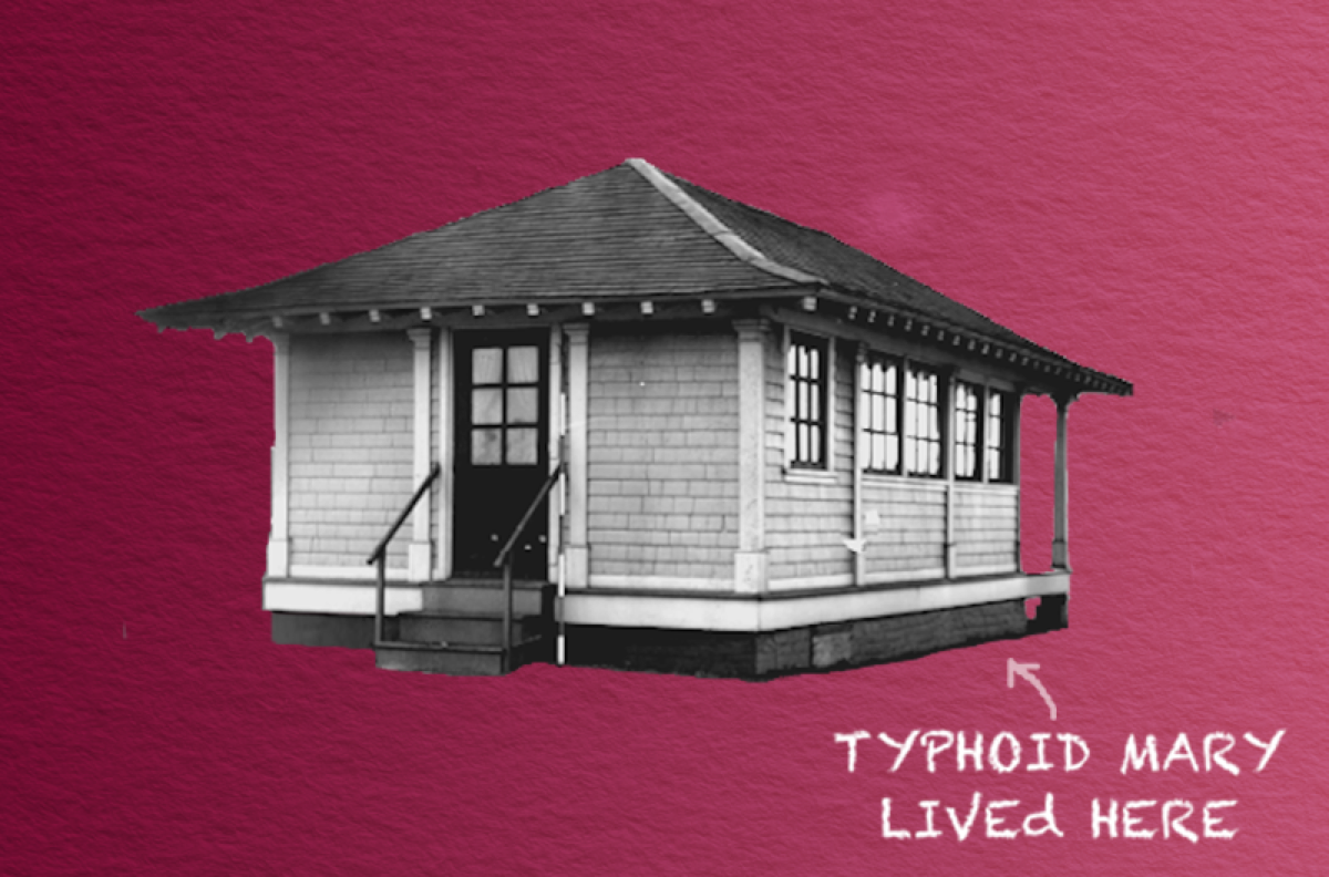 "outline of small white cottage with three steps and scratched writing that says ""typhoid mary lived here"""
