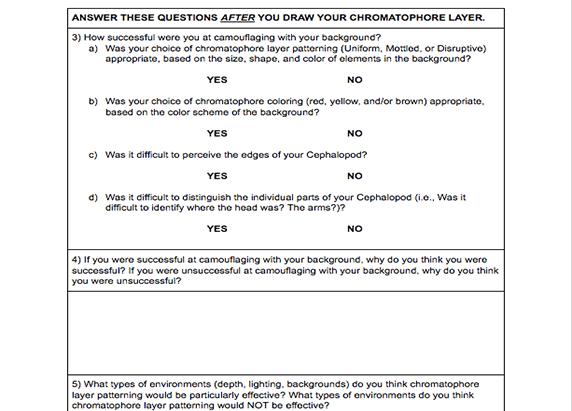 screenshot of the worksheet