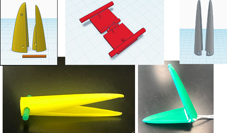 five different illustrations and images of 3D printed beaks