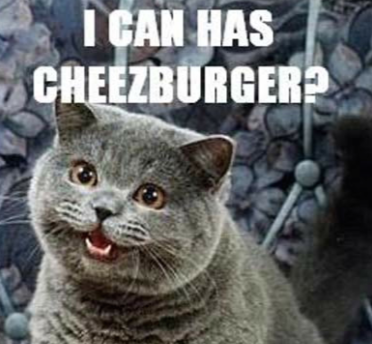 "image of a gray cat smiling with overlaid text that says ""i can has cheeseburger?"""