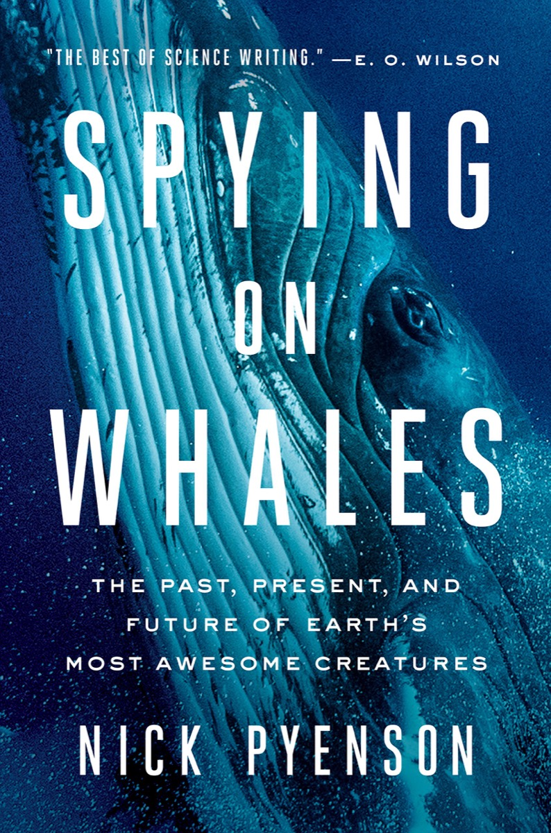 book cover with giant blue whale under the water