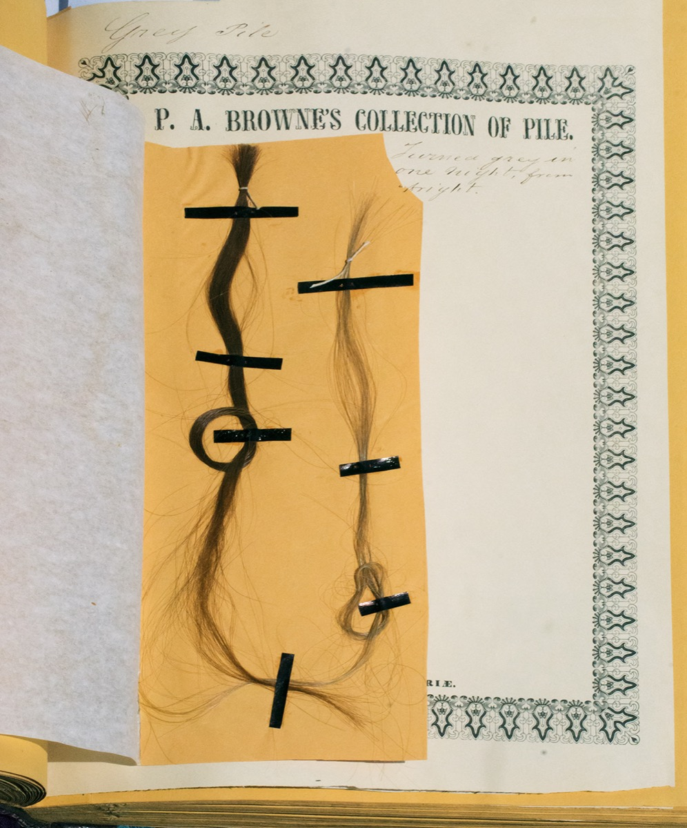 Two human hairs, pasted onto a yellow piece of paper