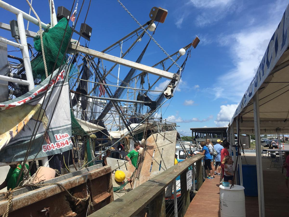 a shrimper boat docked on a pier