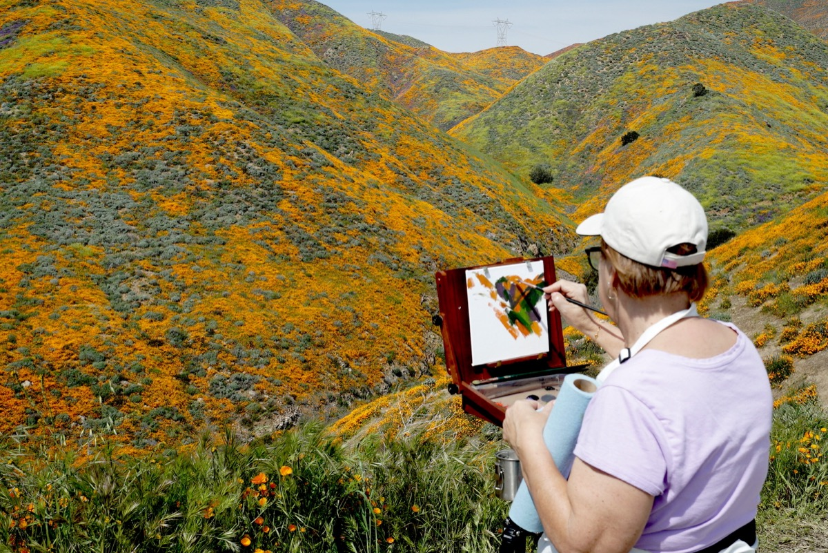 woman in the foreground with her back to the camera paints stripes of the colors she sees before her in the flowers, orange green and some purple