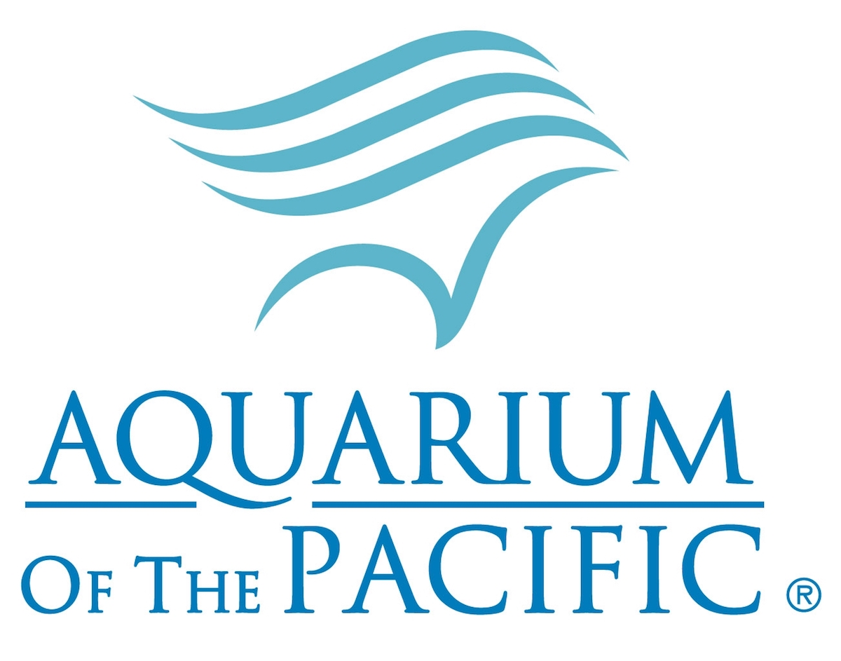 a logo in aqua marine blue of some waves and underneath 'aquarium of the pacific'