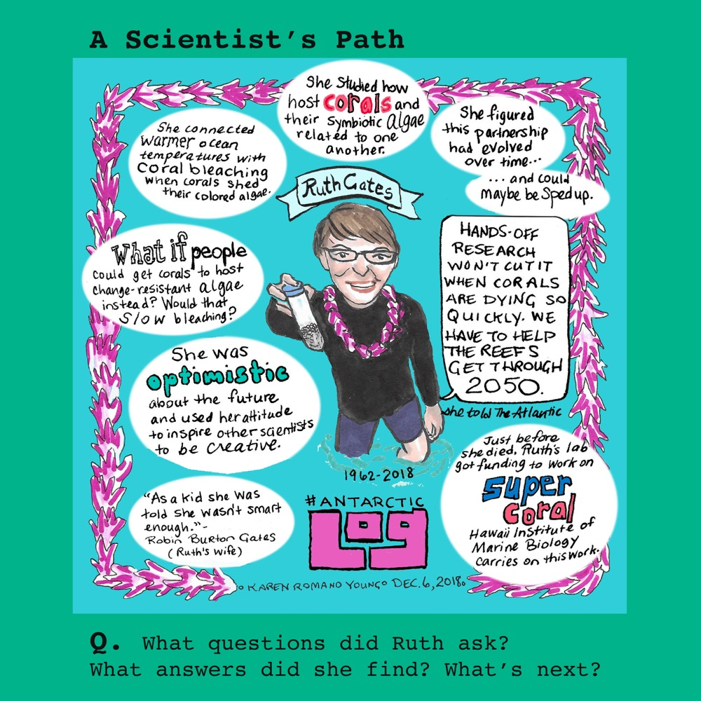 A comic about how scientist Ruth Gates became interested in coral conservation. © Karen Romano Young