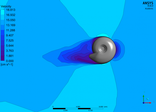 a 3D modeled shell on a various blue shaded map. the darker blue indicates low velocity while light blue means higher velocity. there is less velocity closer to the shell, near the opening