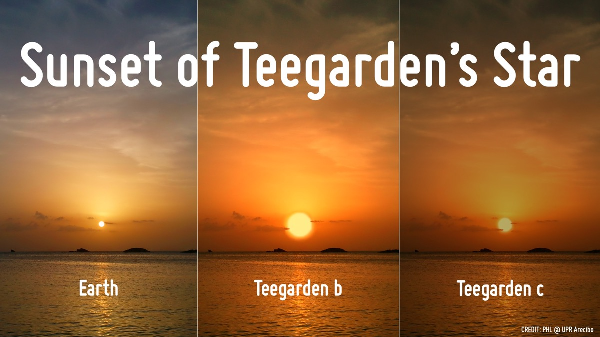 three sunsets, side by side. the leftmost is of the earth. the second, a simulation of exoplanet teegarden b, is double the size. the rightmost, a simulation from the potential exoplanet teegarden c, is about the same size as earth's