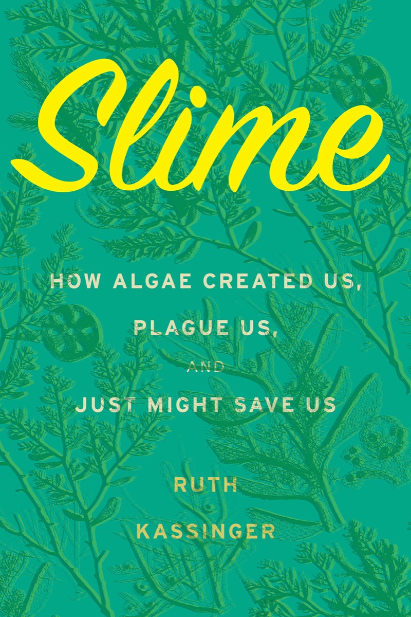 light green book cover with yellow cursive writing that says 'slime'