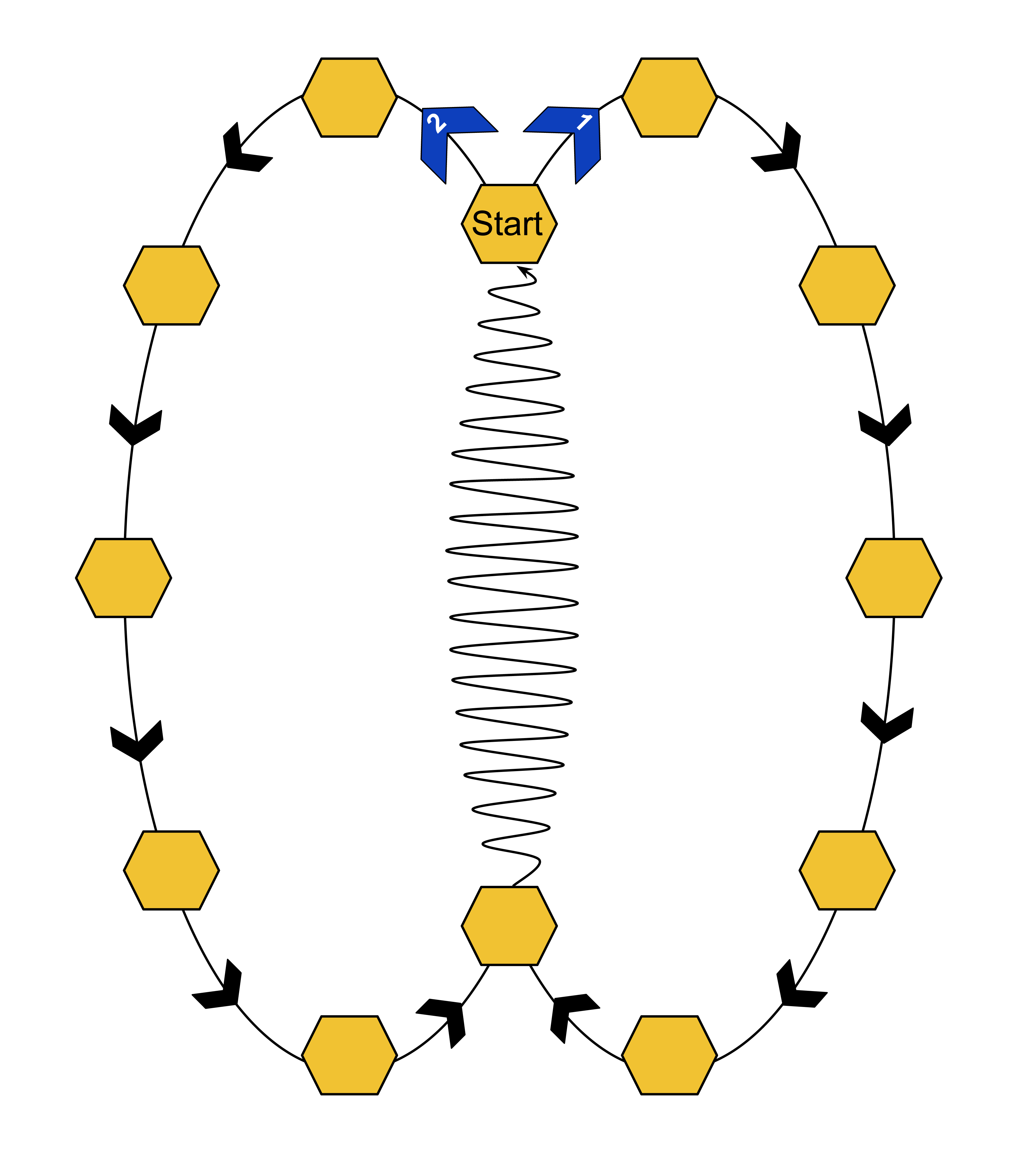 "a colored diagram showing two ovals with various yellow hexagons along the edge of the oval paths. at the top hexagon where the two oval lines meet is the word ""start"". in the middle of the ovals is a squiggly line"
