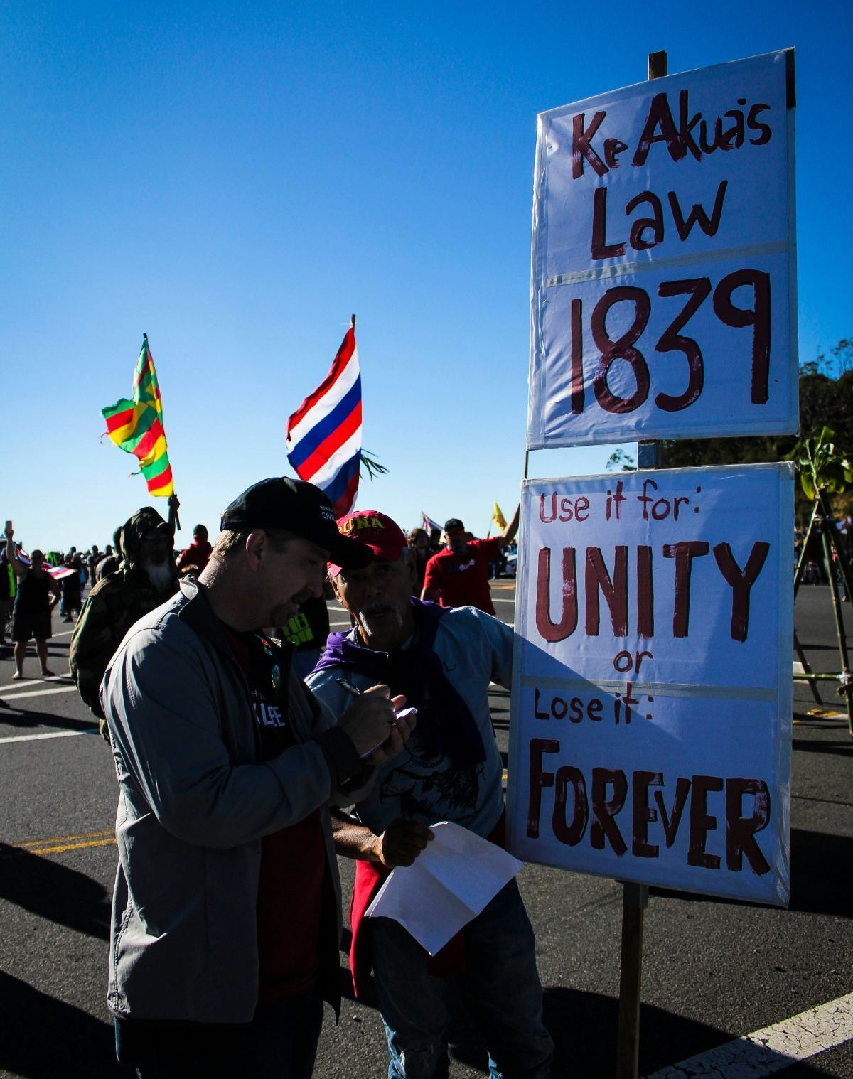 protesters/protectors hold flags and signs on mauna kea